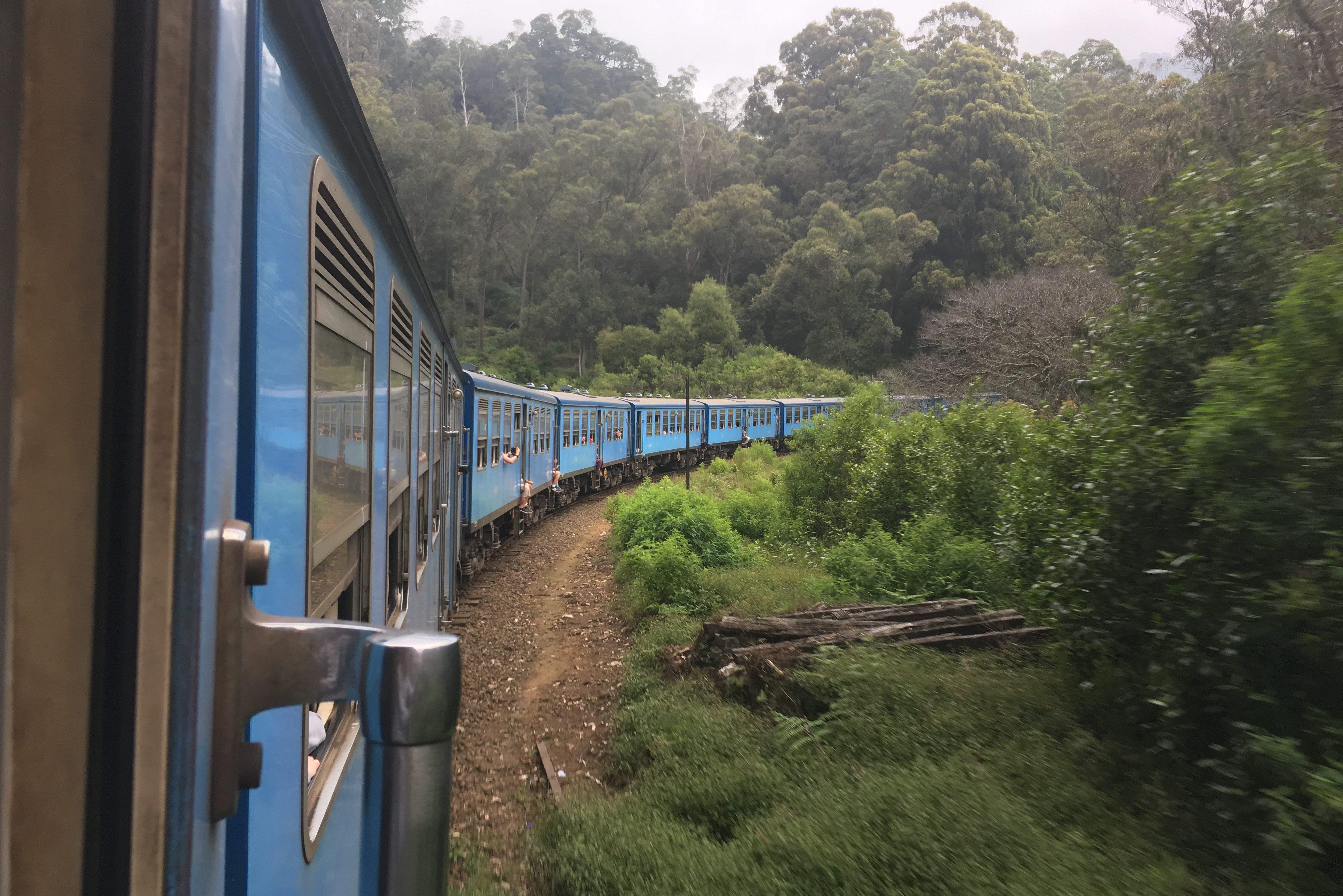 Train plantation de thé