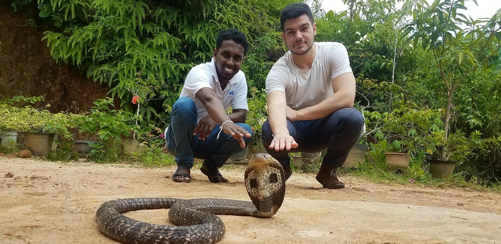 sri lanka authentique ferme serpents